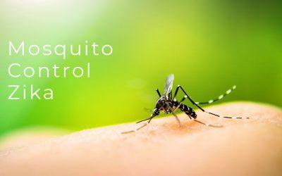 Mosquito Control Zika